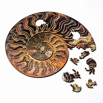 Ammonite Puzzle -117 pieces