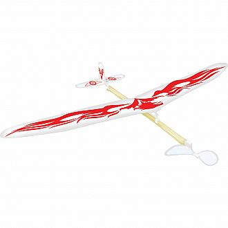 Pheonix Model Airplane
