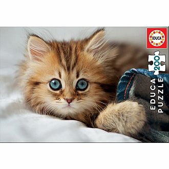 Kitten (Educa 200 pc)